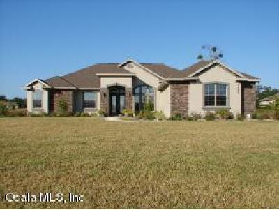 Ocala Single Family Home For Sale: 3997 SE 43rd Circle