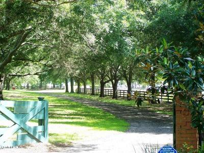 Dunnellon Farm Pending: 20725 SW 10th Street