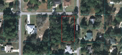 Dunnellon Residential Lots & Land For Sale: SW 202 Terrace