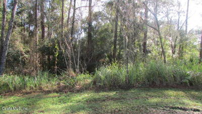 Dunnellon Residential Lots & Land For Sale: SW 95 Place