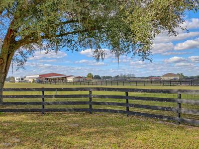 Williston Farm For Sale: 1890 SE Highway 41