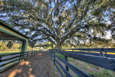 Ocala Farm For Sale: 7605 SW 19th Avenue Road