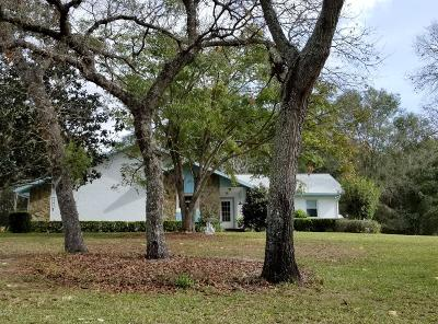 Dunnellon Single Family Home For Sale: 9026 SW 204th Circle