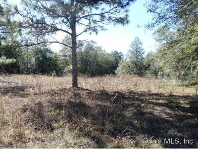 Dunnellon Residential Lots & Land For Sale: 1110 W Withlacoochee Trail