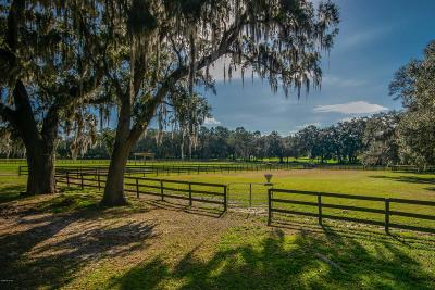 Ocala Farm For Sale: 8200 NW Hwy 225a
