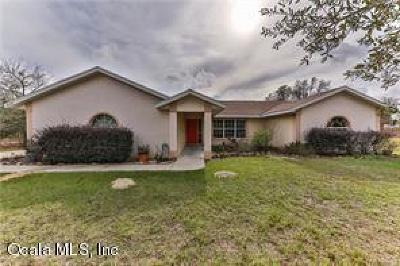 Dunnellon Single Family Home For Sale: 22638 SW Surf Boulevard