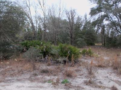 Dunnellon Residential Lots & Land For Sale: Lot 12 SW South Hill Court