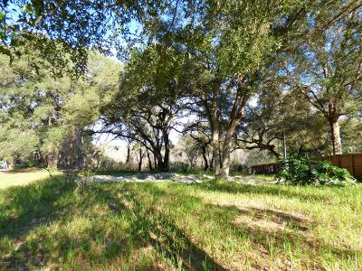 Belleview Residential Lots & Land For Sale: 12982 SE 106th Court
