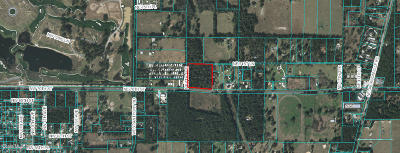 Ocala Residential Lots & Land For Sale: Hwy 326