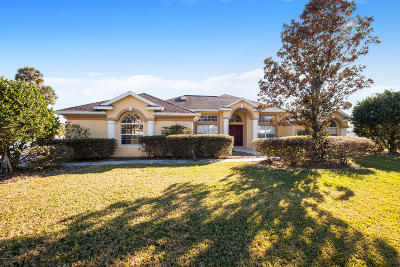 Ocala Single Family Home For Sale: 3979 SE 39th Circle