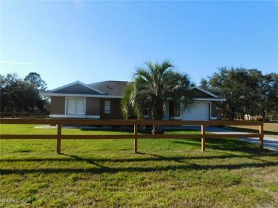 Hernando Single Family Home For Sale: 6448 N Pagoda Tree Terrace