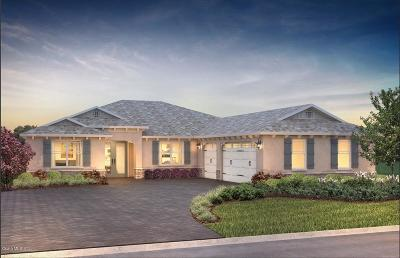 Ocala Single Family Home For Sale: 9192 SW 89th Street Road