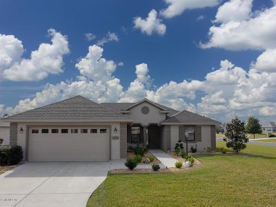 Stonecrest Single Family Home For Sale: 10908 SE 169th Lane