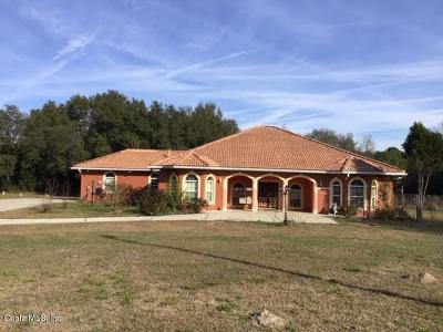 Dunnellon Single Family Home For Sale: 13125 SW Hwy 484