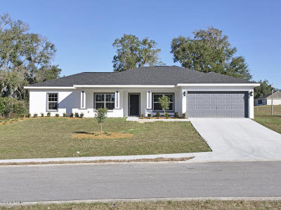 Ocala Single Family Home For Sale: 11 NW 42nd Place