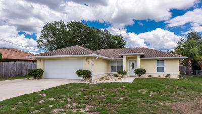Belleview Single Family Home For Sale: 11875 SE 72nd Terrace Road