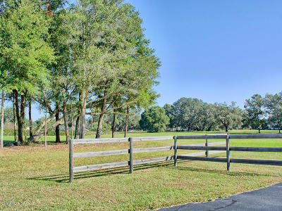 Ocala FL Residential Lots & Land For Sale: $232,000