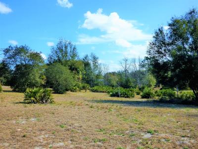 Dunnellon FL Residential Lots & Land For Sale: $59,900