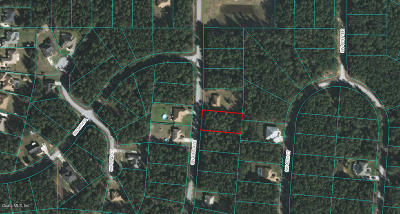 Kingsland Cntry Residential Lots & Land For Sale: SW 42 Avenue