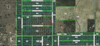 Rainbow Lake Es Residential Lots & Land For Sale: NW Buena Vista Road