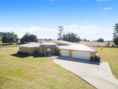 Ocala Single Family Home For Sale: 953 NW 63rd Court