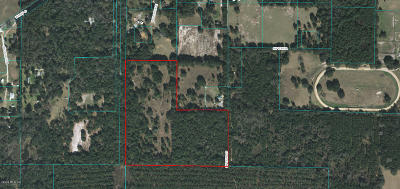 Ocala Residential Lots & Land For Sale: SW 117th Court