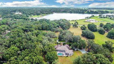 Single Family Home For Sale: 22036 Lake Seneca Road