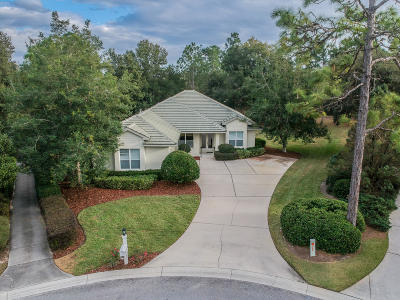 Citrus County Single Family Home For Sale: 3301 N Hammock Dunes Village Point