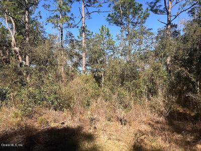 Citrus County Residential Lots & Land For Sale: 2119 W Pinegrove Drive