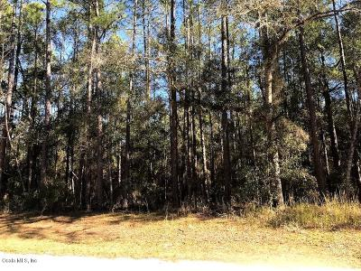 Citrus County Residential Lots & Land For Sale: 8683 N Spikes Way