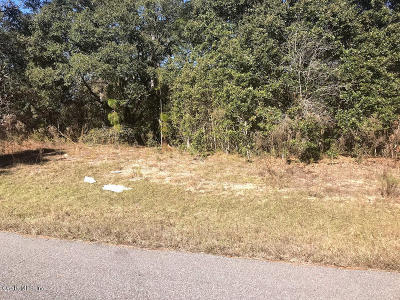 Citrus County Residential Lots & Land For Sale: 2097 W Pinegrove Drive