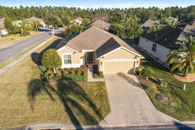 Ocala Single Family Home For Sale: 6601 SW 93rd Court