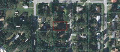 Ocala Single Family Home For Sale: 822 SE 33rd Avenue