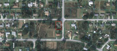 Ocala Single Family Home For Sale: 6650 NW 10th Avenue