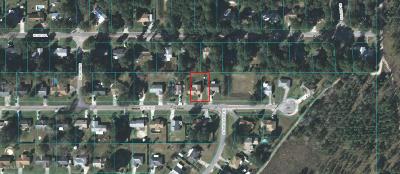 Ocala Single Family Home For Sale: 4575 SE 59th Street