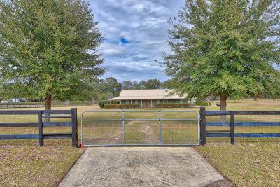 Ocala Single Family Home For Sale: 3431 NE 56th Street