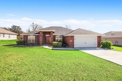 Ocala Single Family Home For Sale: 1067 SE 65th Circle