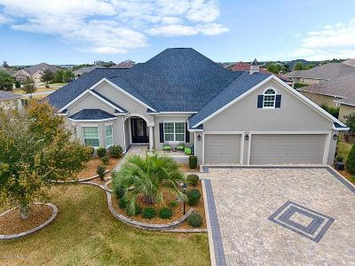 Lake County, Sumter County Single Family Home For Sale: 2942 Braddock Court
