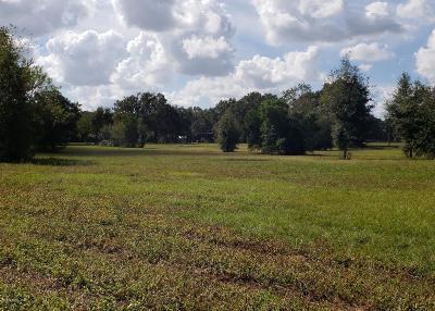Ocala Residential Lots & Land For Sale: 11 NE 49th Street