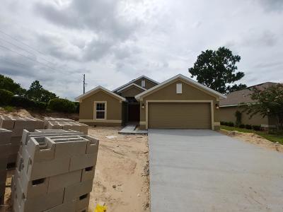 Single Family Home For Sale: 6 Diamond Cove Ct