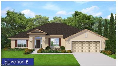Belleview FL Single Family Home For Sale: $244,100