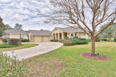 Ocala Single Family Home For Sale: 453 Lake Drive