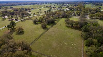 Morriston Farm For Sale: 4030 SE 219th Avenue