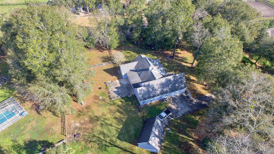 Marion County Single Family Home For Sale: 11272 NW 17th Court Road