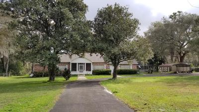 Levy County Single Family Home For Sale: 591 SE Hwy 41