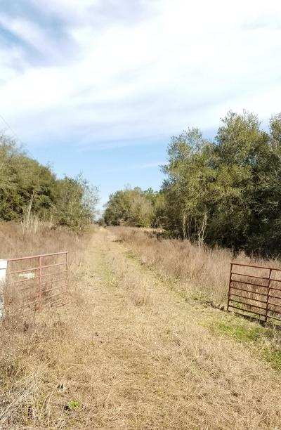 Ocala Residential Lots & Land For Sale: Hwy 484