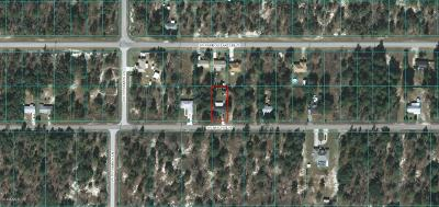 Dunnellon Single Family Home For Sale: 22365 SW Beach Boulevard