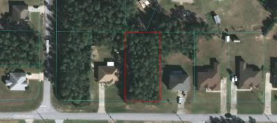 Ocala Waterway Residential Lots & Land For Sale: 4175 SW 103 Street Road