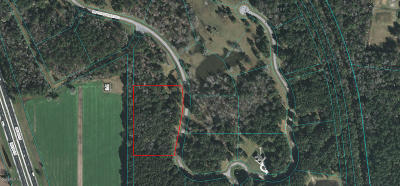 Ocala Residential Lots & Land For Sale: NW 101 St. Road Lot 3