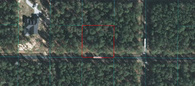 Ocala Waterway Residential Lots & Land For Sale: 4133 SW 114 Place